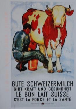 Gute Schweizer Milch